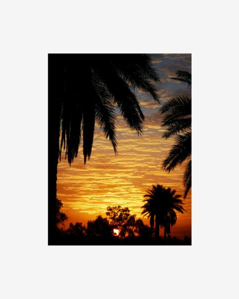 117_sunsetatthepresidentialpalacebaghdad