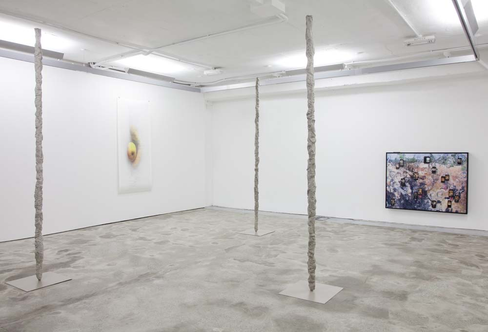 Anne_de_Vries_Trails_Rising_Installation_view2