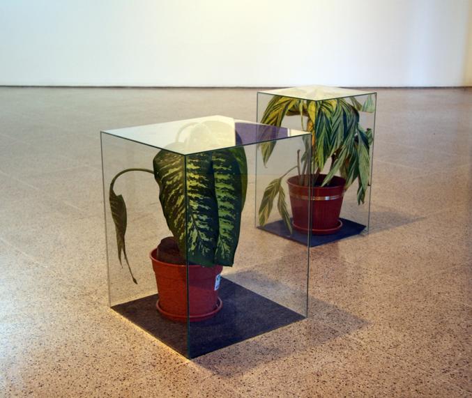 Installation_at_Derek_Eller_Gallery_2010